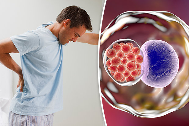 Влияние простатита на оплодотворение